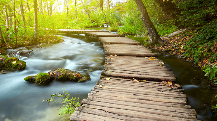 Holzpfad entlang eines Bachlaufes