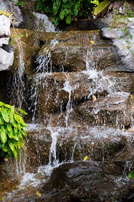 Tropischer Garten Wasserfall