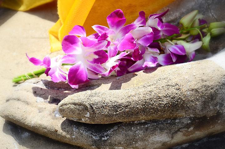 Buddhahand, in der rosafarbene Orchideen liegen