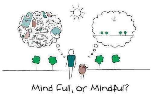 Cartoon Mind Full or Mindful?